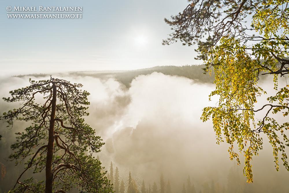 Aamusumua Päähkänäkalliolla, Kitkajoki, Kuusamo