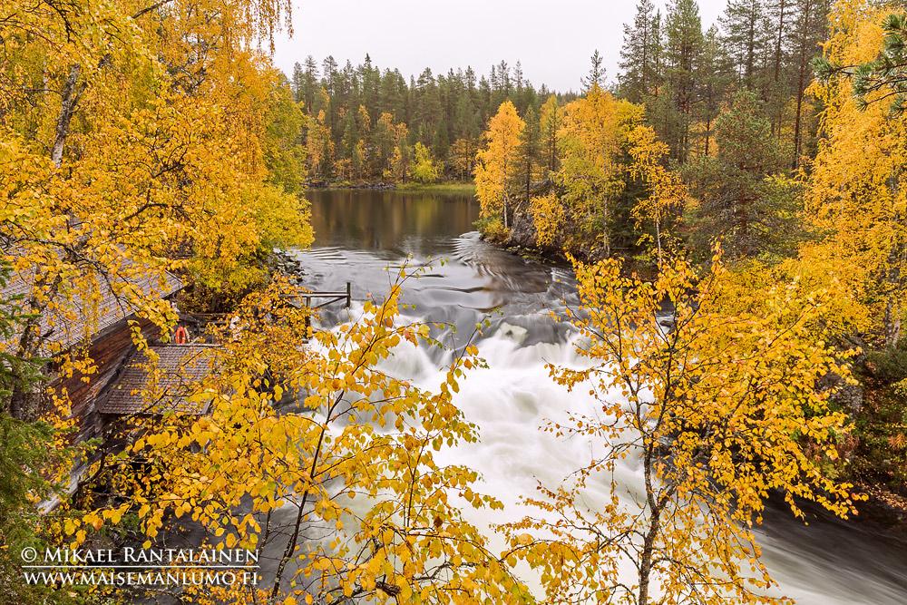 Myllykoski, Kitkajoki, Kuusamo