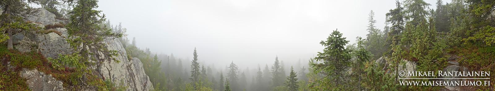 360° panoraama, Koli, Lieksa (PK101)