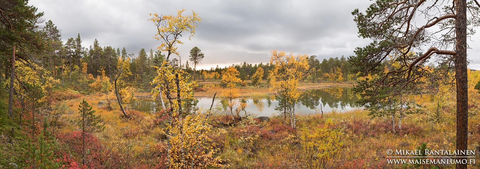 Haapakosken lähellä, Inari (PK108)