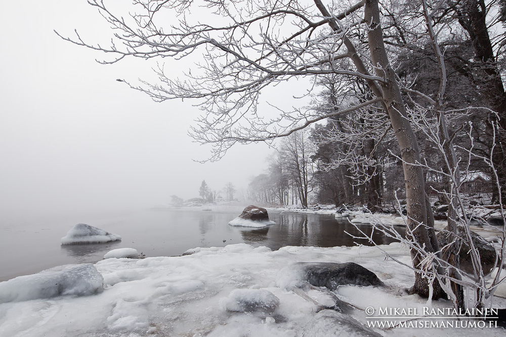 Kallahdenniemi, Helsinki (H501)
