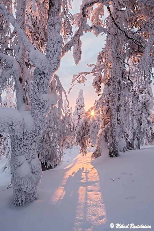 Konttainen, Kuusamo (yhdistetty kolmesta valotuksesta)
