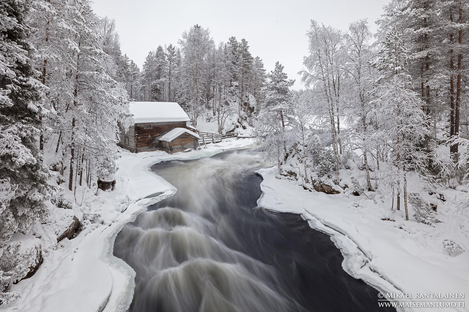 Myllykoski ja huurtuneet puut, Kuusamo