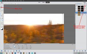 Kuvien kohdistaminen Move Tool:in avulla, kohdistettavan tason peittävyydeksi 50%