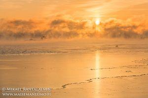 Merisavua auringonnousun aikaan, Kallahdenniemi, Helsinki (HT214)